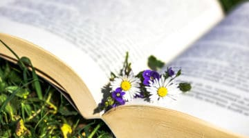 5 Personal Development Books as Gift Ideas This Christmas